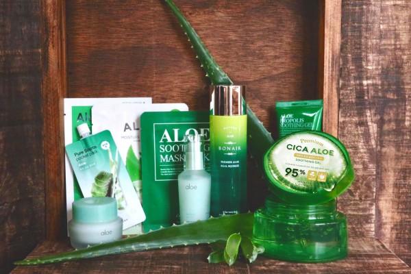 Korean Beauty House Aloe Vera Box